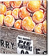 Pie Pumpkins For Sale Acrylic Print