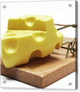 Piece Of Cheese In Mouse Trap Acrylic Print by Sami Sarkis