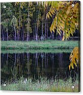 Pieceful Moments Acrylic Print