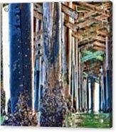 Pier Pylons Balboa Acrylic Print
