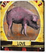 Pig Out Acrylic Print by Joel Payne