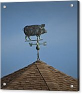 Pig Weathervane Ocean Isle North Carolina Acrylic Print
