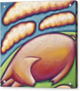 Pigs Peace Acrylic Print