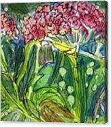 Piinta The Butterfly Flower Acrylic Print