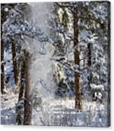 Pike National Forest Snowstorm Acrylic Print