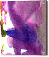 Pilar Acrylic Print