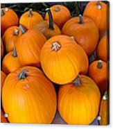 Pile Of Pumpkins For Sale Expressionist Effect Acrylic Print