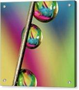 Pin Drop Acrylic Print