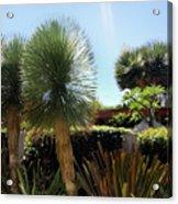 Pinball Plants, Long-pin Plants Acrylic Print