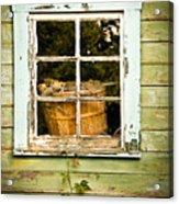 Pine Cones In The Window Acrylic Print