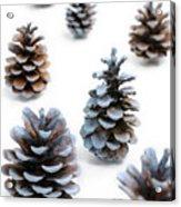 Pine Cones Looking Like Christmas Trees On White Snowy Backgroun Acrylic Print