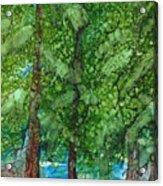 Pine Haven Acrylic Print