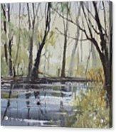 Pine River Reflections Acrylic Print