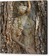 Pine Tree Nymph Acrylic Print