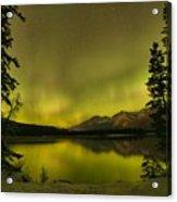 Pine Tree Silhouettes Acrylic Print