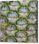 Pineapple Close-up Acrylic Print