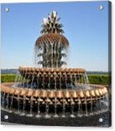 Pineapple Fountain In The Park Acrylic Print