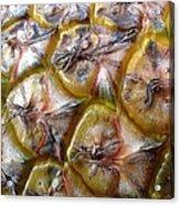 Pineapple Skin Acrylic Print