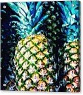 Pineapples Acrylic Print