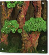 Pines By The Brook Acrylic Print