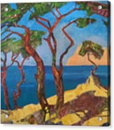 Pines Of The Silver Beach Acrylic Print
