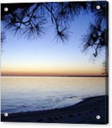 Piney Sunset Acrylic Print