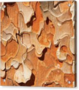 Pining For A Jig-saw Puzzle Acrylic Print