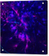 Pink And Blue Moss Fractal Acrylic Print