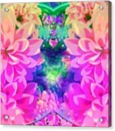 Pink And Lilac Acrylic Print