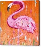 Pink And Orange Flamingo  Acrylic Print