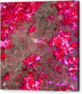 Pink And Red Firecracker Debris Abstract Acrylic Print