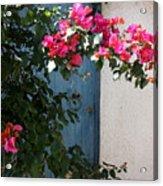 Pink And Teal Acrylic Print