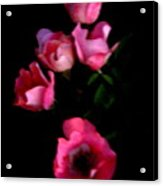 Pink And White Flowers On Black Acrylic Print