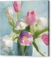 Pink And White Tulips Acrylic Print