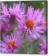 Pink Autumn Flowers Acrylic Print