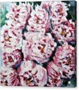 Pink Beauties Acrylic Print