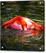 Pink Bliss Acrylic Print