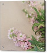 Pink Bunches Acrylic Print