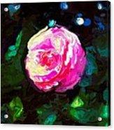 Pink Camille,nishishinjuku Acrylic Print