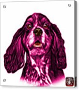 Pink Cocker Spaniel Pop Art - 8249 - Wb Acrylic Print