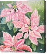 Pink Delight Acrylic Print by Deborah Ronglien