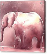 Pink Elephant Acrylic Print