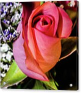 Pink Eye Rose Acrylic Print