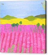 Pink Field Acrylic Print