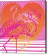Pink Flamingos Acrylic Print