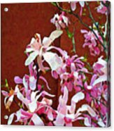 Pink Floral Arrangement Acrylic Print