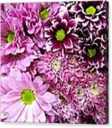 Pink Flower Carpet Acrylic Print