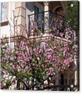 Pink Flower Tree. Elegant Acrylic Print