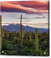 Pink Four Peaks Sunset  Acrylic Print