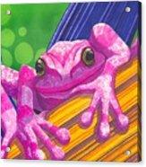 Pink Frog Acrylic Print